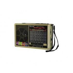 Радиоприемник Golon RX-6666  золото